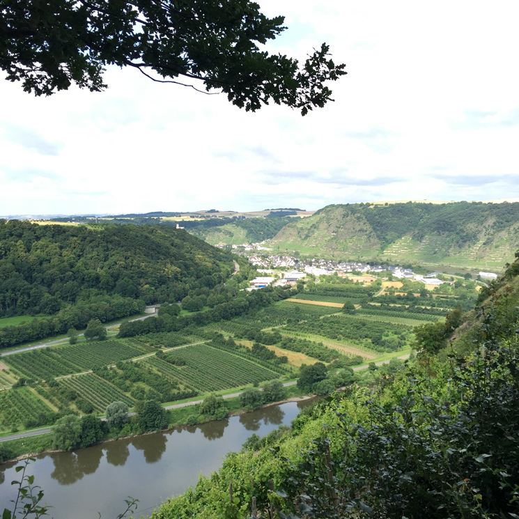 Schmackofatzo.de_auf_reise_Kirchheim_4