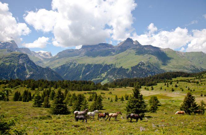 Schmackofatzo.de_unterwegs_Schweiz_savognin_St_Moritz
